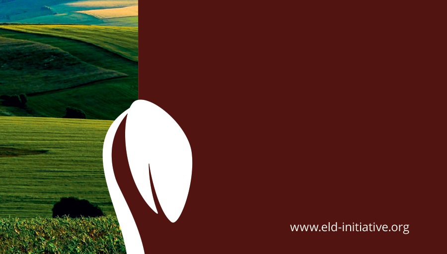 The Value of Land: Prosperous lands and positive rewards through sustainable land management