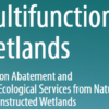 Multifunctional Wetlands: Pollution Abatement and Other Ecological Services from Natural and Constructed Wetlands