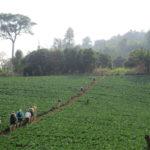 Economics-of-Water-and-Land-Challenges-UNU-INWEH