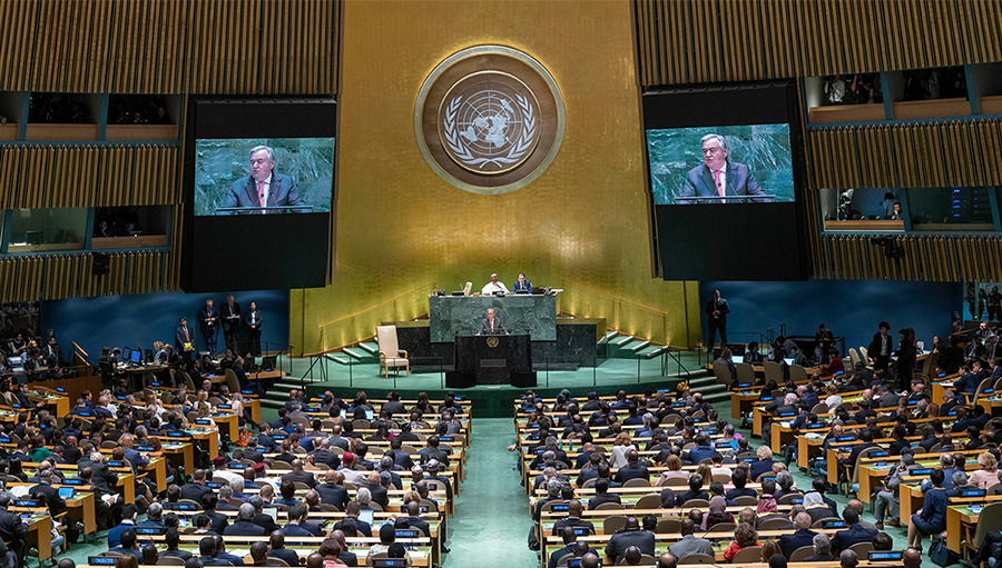 The Future We Want: The UN We Need