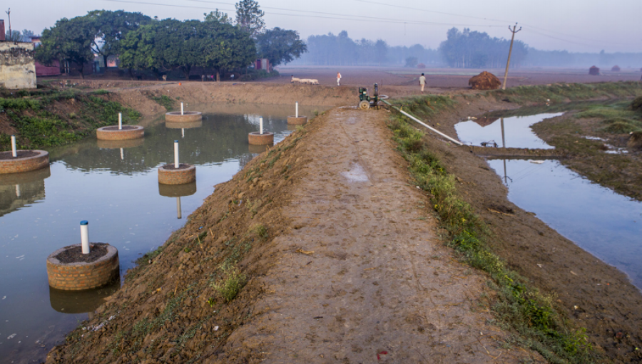 Utilizing Floodwaters for Recharging Depleted Aquifers and Sustaining Irrigation: Lessons from Multi-scale Assessments in the Ganges River Basin, India