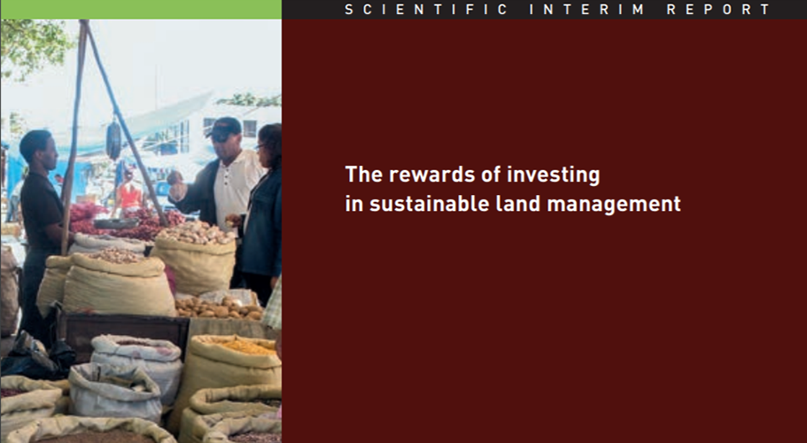 Interim Report for the Economics of the Land Degradation Initiative: A global strategy for sustainable land management
