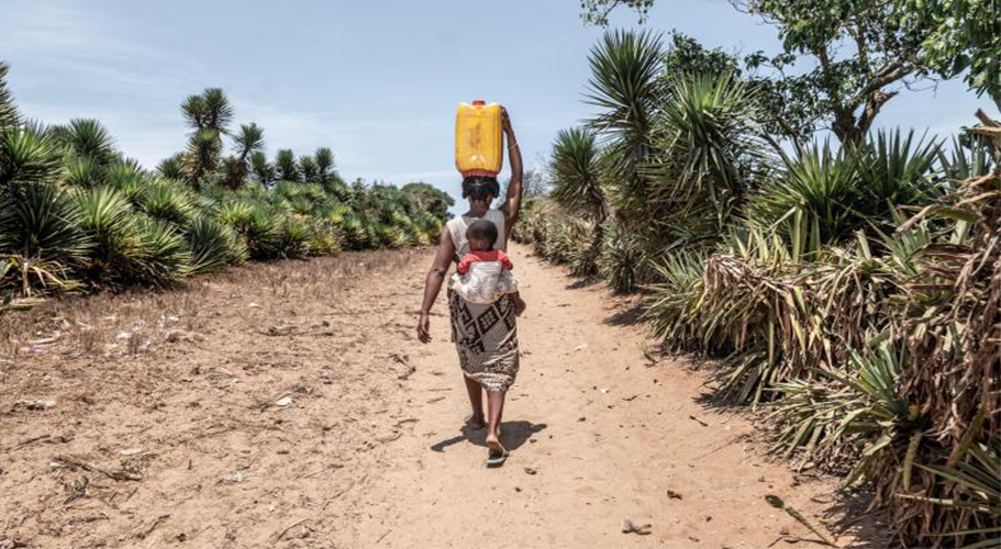 Water: A Matter of Survival in the World of Pandemics